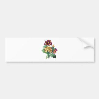 Primula Auricula - Cowslip- Pierre Joseph Redoute Bumper Sticker