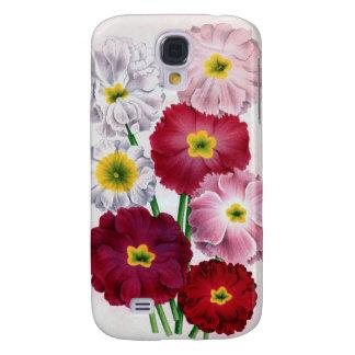 Primula flower with vintage design case