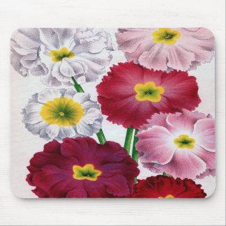 Primula flower with vintage design mousepad