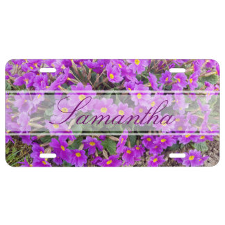 Primula juliae primrose flower license plate
