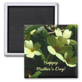 Primula vulgaris Primrose Mother's Day magnet