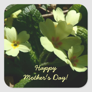 Primula vulgaris Primrose Mother's Day sticker