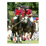 Prince Charles William Harry polo Postcard