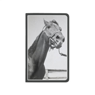 Prince Georges County Horse Pocket Journal