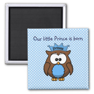 Prince owl 2 inch square magnet