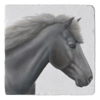 Prince the Shetland Pony Stone Trivet Trivets