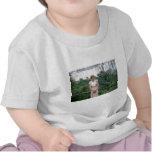 Princesa Diana el Brasil 1991 Camiseta