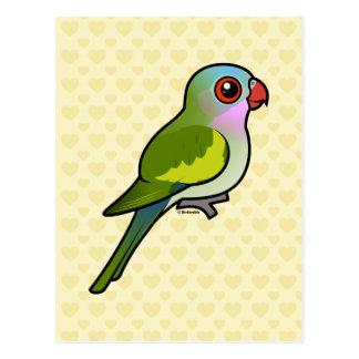 Princesa Parrot Tarjetas Postales