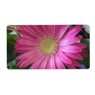 Princesa rosada de la margarita etiquetas de envío