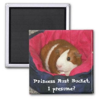¿Princesa Rust Bucket, supongo? Imán Cuadrado
