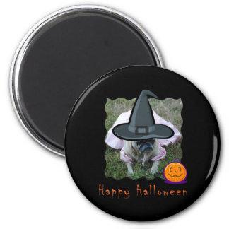Princesa Witch Halloween Magnet del perro del barr Iman Para Frigorífico