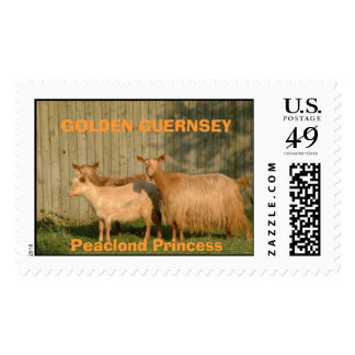 Princess and daughters, GOLDEN GUERNSEYPeaclond... Postage