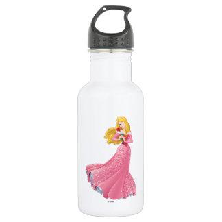 Princess Aurora 2 Stainless Steel Water Bottle
