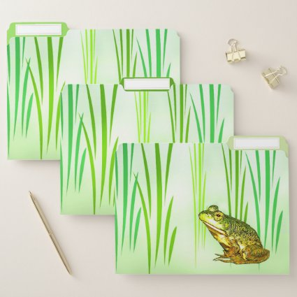 Princess Charming Frog File Folder Set