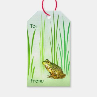 Princess  Charming Frog Pack of Gift Tags