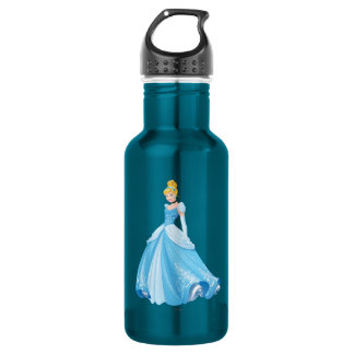 Princess Cinderella 2 Stainless Steel Water Bottle