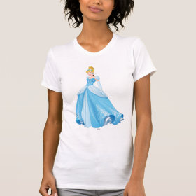 Princess Cinderella Shirts