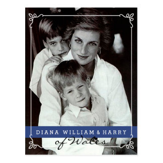 Princess Diana of Wales Will and Harry Postcard