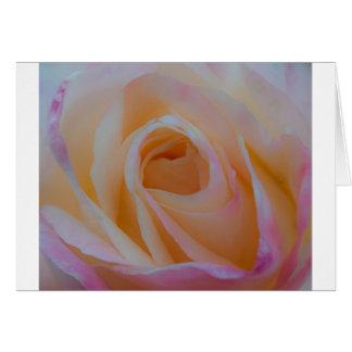 Princess Diana Rose Card