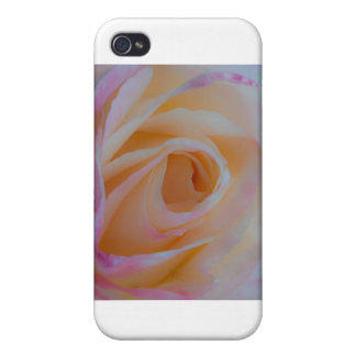 Princess Diana Rose Covers For iPhone 4