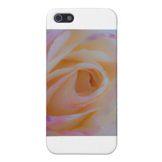 Princess Diana Rose Cases For iPhone 5