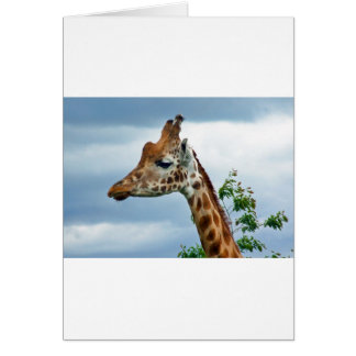 Princess Giraffe Card
