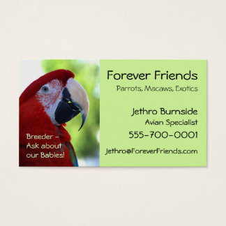 Princess Green Wing Macaw Business Card