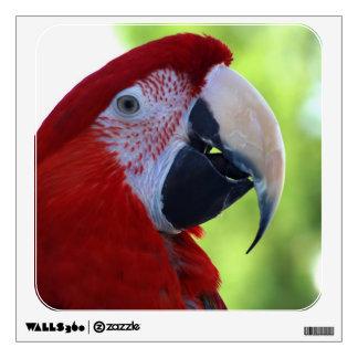Princess Green Wing Macaw Wall Decal
