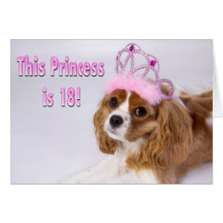 Princess Is 18 Cavalier King Charles Card