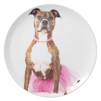 Princess Pitty Melamine Plate