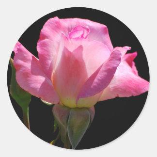 Princess Rose Stickers