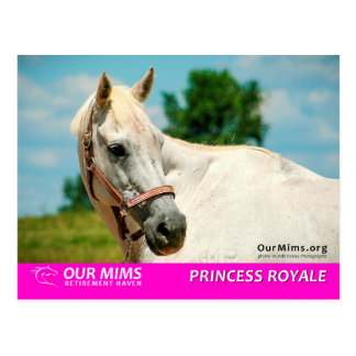 Princess Royale postcard