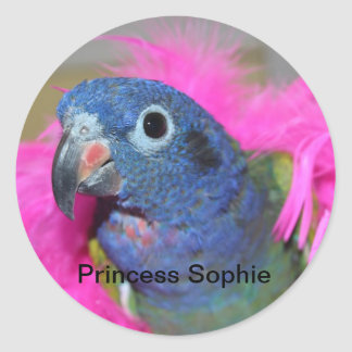 Princess Sophie stickers