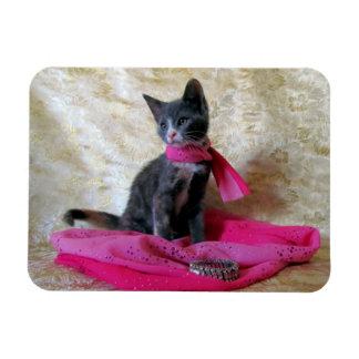 Princess Tiana Fashionista Flexible Magnet