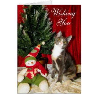 Princess Tiana's Christmas Card (Calico Cat Kitten