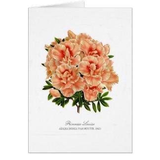 Princesse Louise Note Card