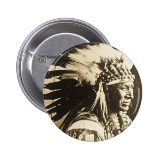Principal cisne blanco de Lakota Siux Pin