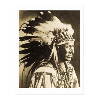 Principal cisne blanco de Lakota Siux Postal