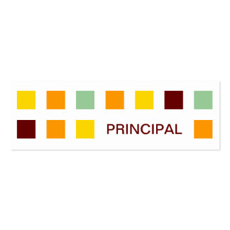 PRINCIPAL (mod squares) Double-Sided Mini Business Cards (Pack Of 20)
