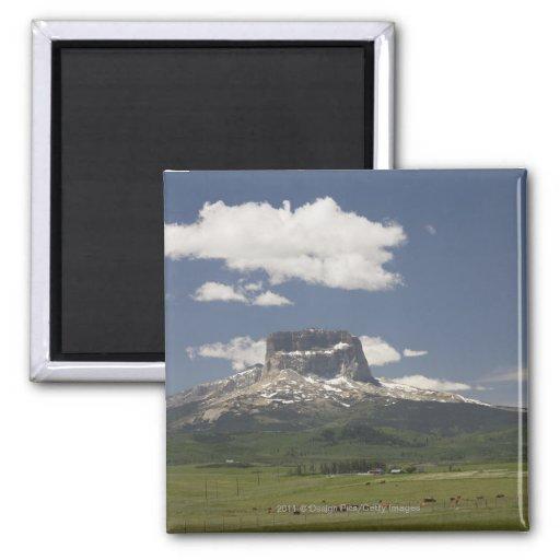 Principal montaña con los pastos de pastar ganado imanes