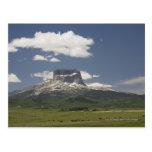 Principal montaña con los pastos de pastar ganado tarjetas postales