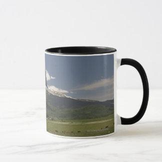 Principal montaña con los pastos de pastar ganado taza