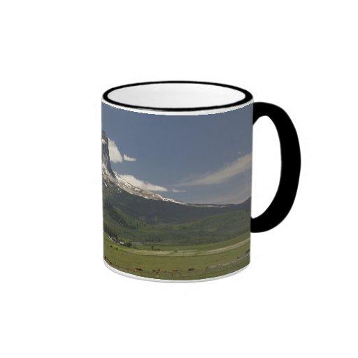 Principal montaña con los pastos de pastar ganado taza de dos colores
