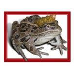 Príncipe de la rana (añada su texto) postal