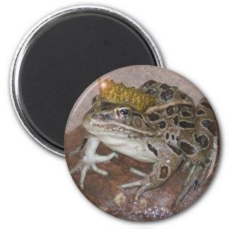Príncipe de la rana imán redondo 5 cm