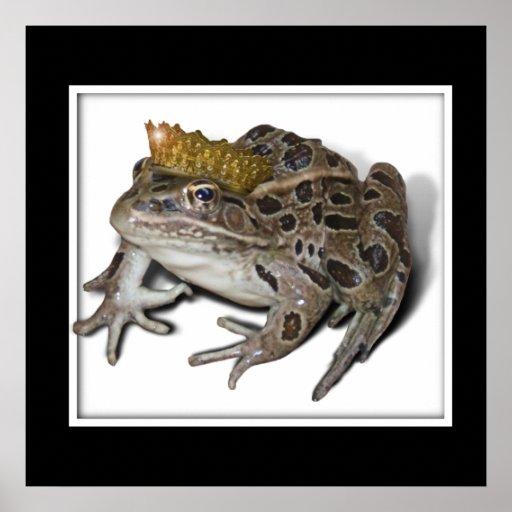 Príncipe de la rana póster