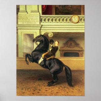 Príncipe heredero Rudolph de Austria Impresiones
