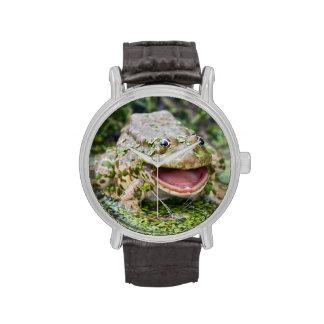 Príncipe Watch de la rana Reloj De Mano