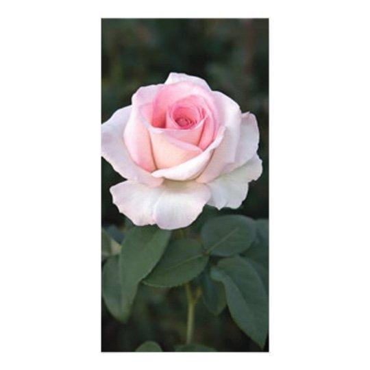 Prink Promise Rose Photo Card
