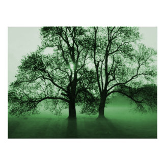 PRINT - 2 Big Trees Green